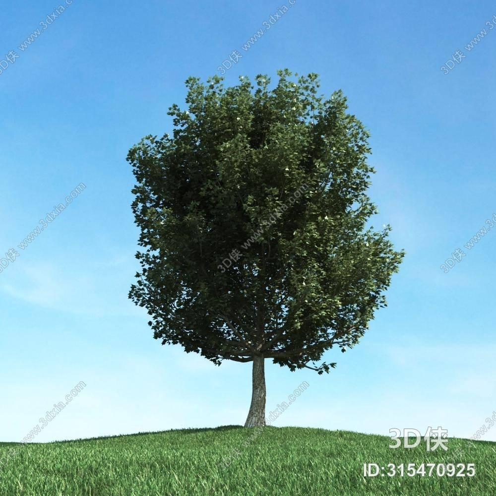 格式是max 2009,建议使用3dmax 2012 软件打开,该景观树图片素材大小