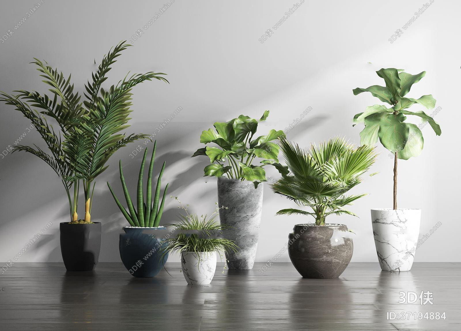 盆栽效果图素材免费下载,本作品主题是现代绿植盆栽组合3d模型,编号是