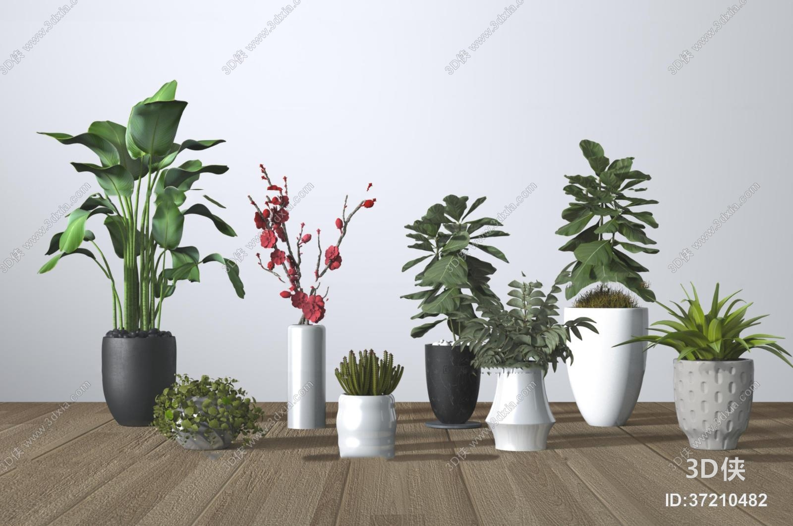 盆栽效果图素材免费下载,本作品主题是现代植物盆栽组合3d模型,编号是