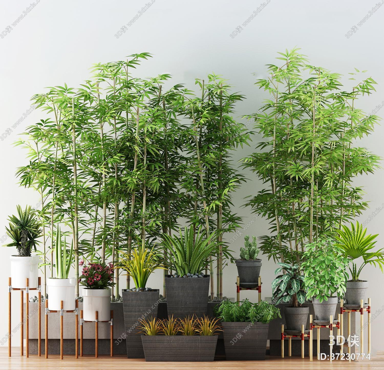 竹子效果图素材免费下载,本作品主题是现代竹子绿植盆栽组合3d模型