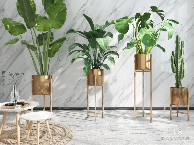 现代植物盆栽圆几摆件组合3D模型