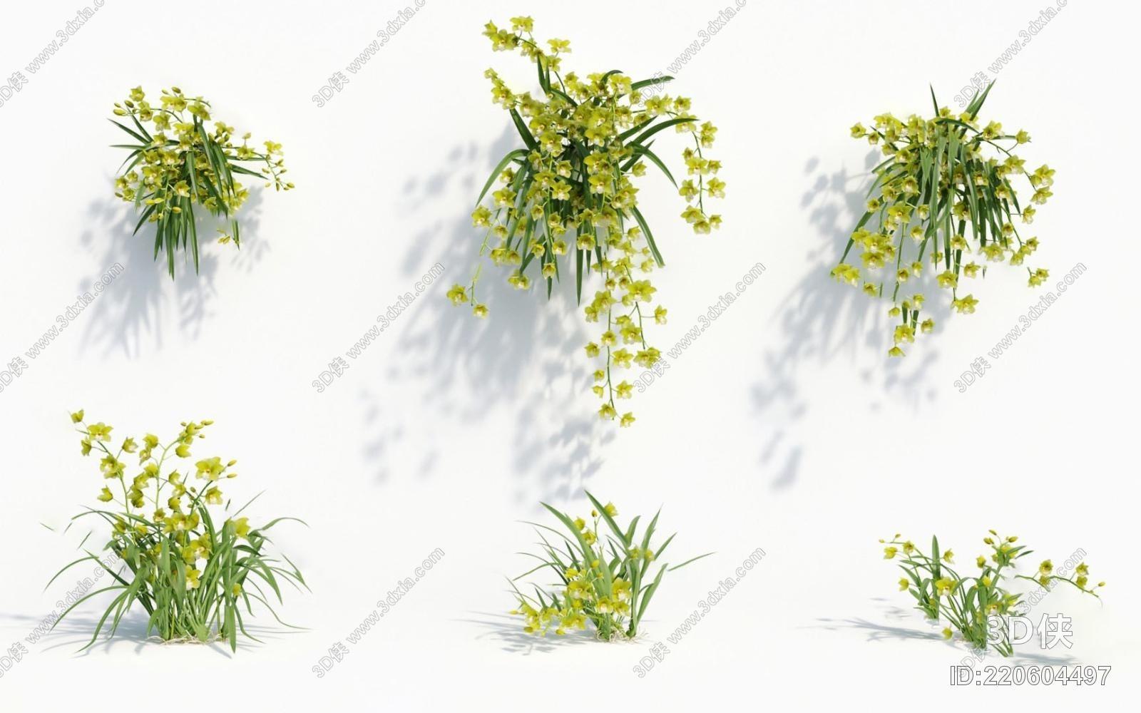 格式是max 2010,建议使用3dmax 2012 软件打开,  该  现代植物盆栽