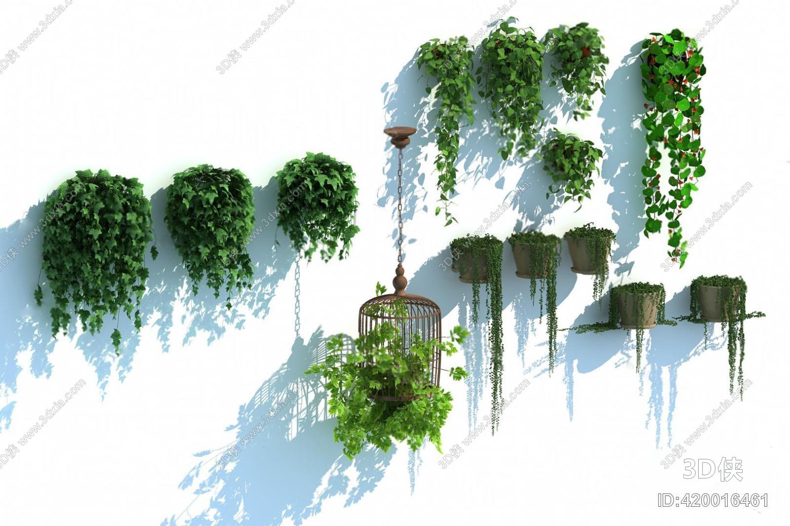 盆栽效果图素材免费下载,本作品主题是藤蔓3d模型,编号是420016461,格