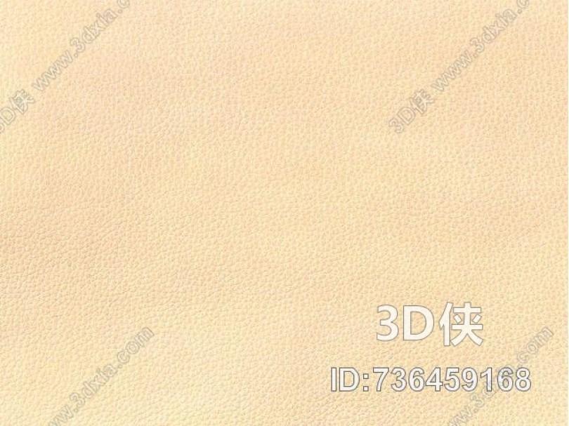 皮革-常用皮革 040