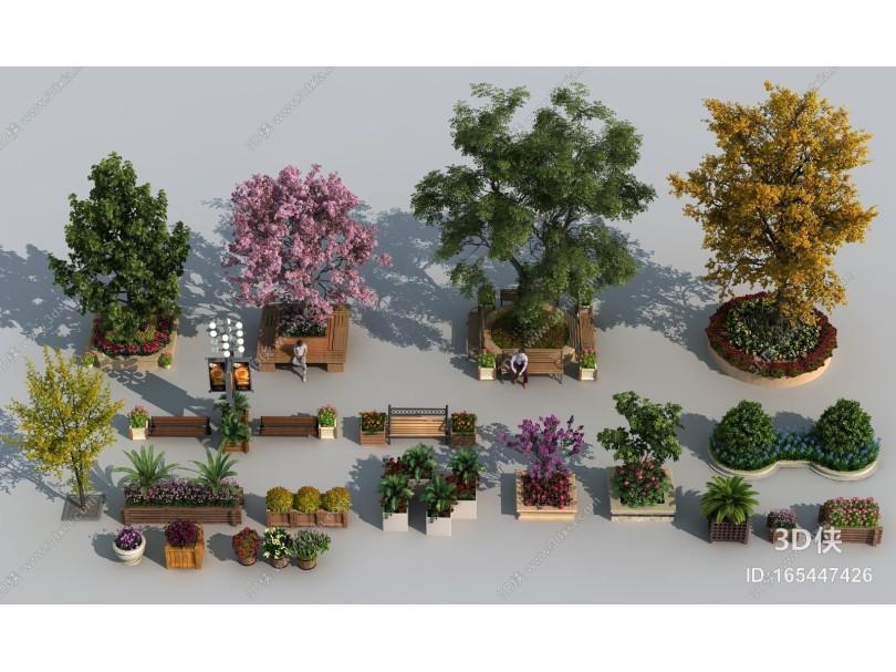 现代植物景观组合 花池 树池