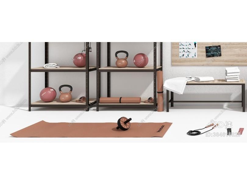 现代瑜伽垫 瑜伽球 器械组合