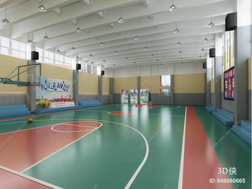 现代室内篮球馆