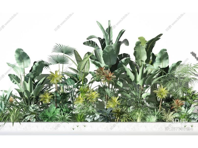 现代植物景观