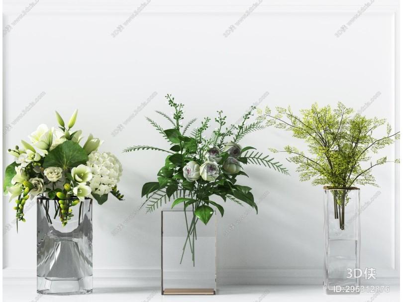 现代绿植 盆栽