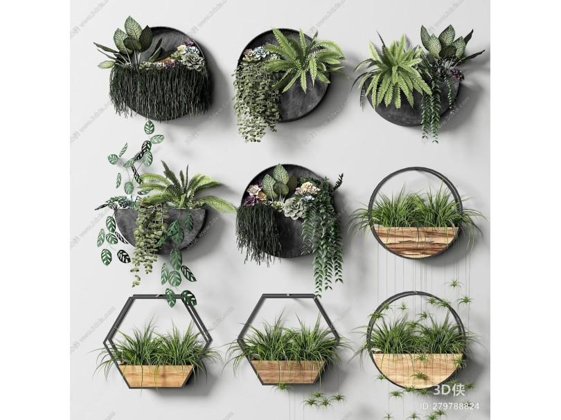 现代绿植挂件
