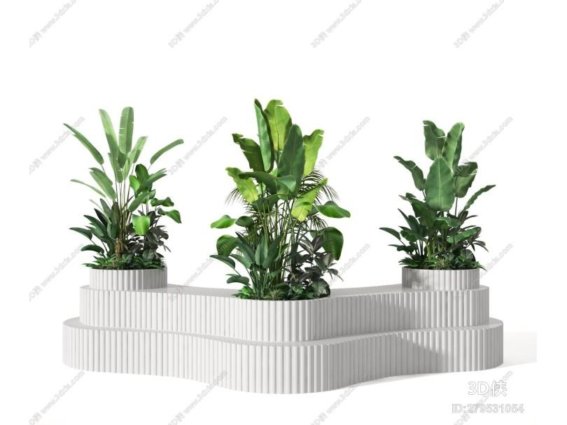 �F代盆栽 植物 �G植